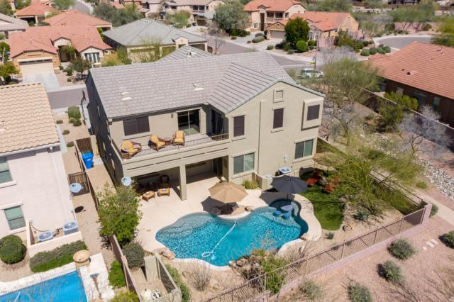 4317 E Hashknife Road, Phoenix, AZ 85050 (MLS #5901183) :: Arizona 1 Real Estate Team