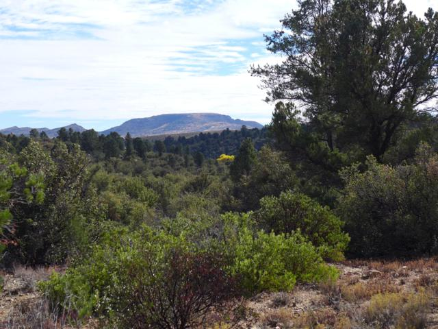 175XX W Buckhorn Drive, Peeples Valley, AZ 86332 (MLS #5901226) :: RE/MAX Excalibur