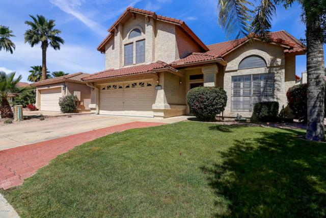 3526 E Windmere Drive E, Phoenix, AZ 85048 (MLS #5901704) :: Power Realty Group Model Home Center