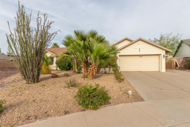 19449 N 8TH Avenue N, Phoenix, AZ 85027 (MLS #5901827) :: Yost Realty Group at RE/MAX Casa Grande