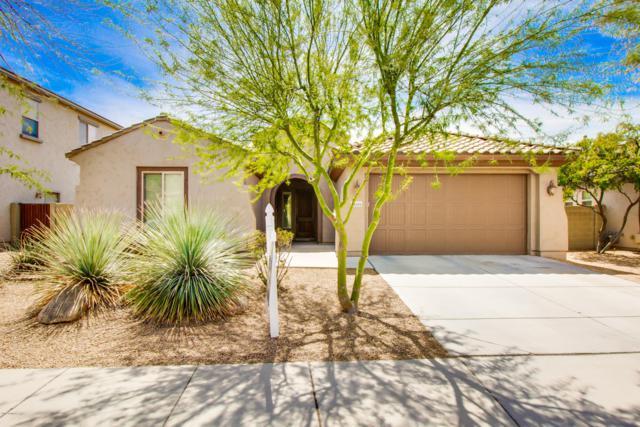 9019 W Quail Track Drive, Peoria, AZ 85383 (MLS #5901957) :: Yost Realty Group at RE/MAX Casa Grande