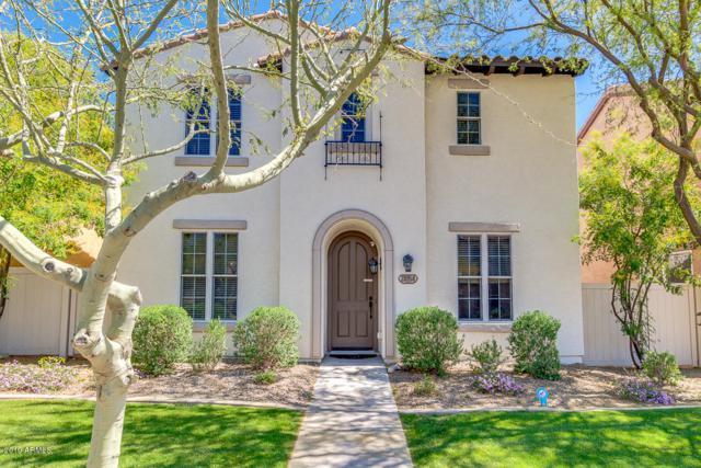 28958 N 124TH Avenue, Peoria, AZ 85383 (MLS #5901986) :: Yost Realty Group at RE/MAX Casa Grande