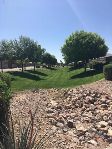 18139 W Palo Verde Court, Litchfield Park, AZ 85340 (MLS #5902094) :: Yost Realty Group at RE/MAX Casa Grande