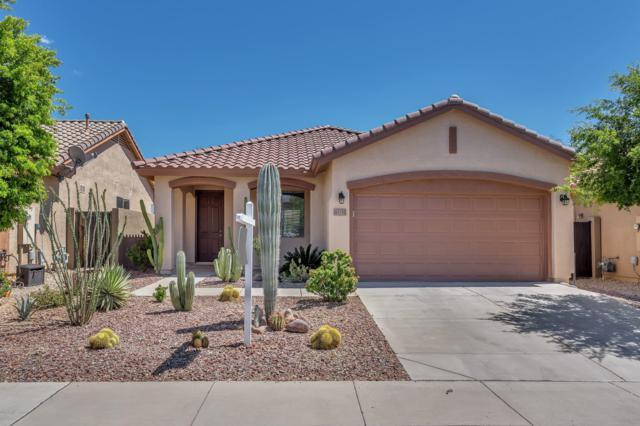 43255 N Vista Hills Drive, Anthem, AZ 85086 (MLS #5902203) :: Yost Realty Group at RE/MAX Casa Grande