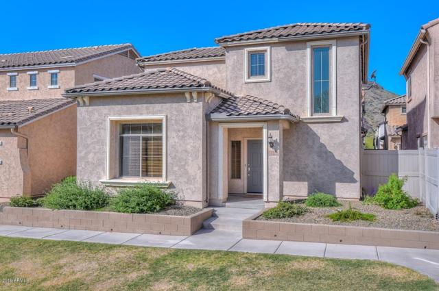 5317 W Marcus Drive, Phoenix, AZ 85083 (MLS #5902368) :: Yost Realty Group at RE/MAX Casa Grande
