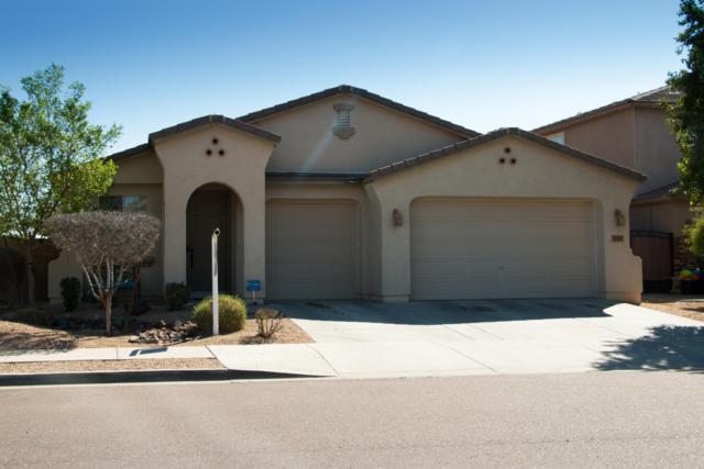 313 S 172ND Drive, Goodyear, AZ 85338 (MLS #5902379) :: Yost Realty Group at RE/MAX Casa Grande