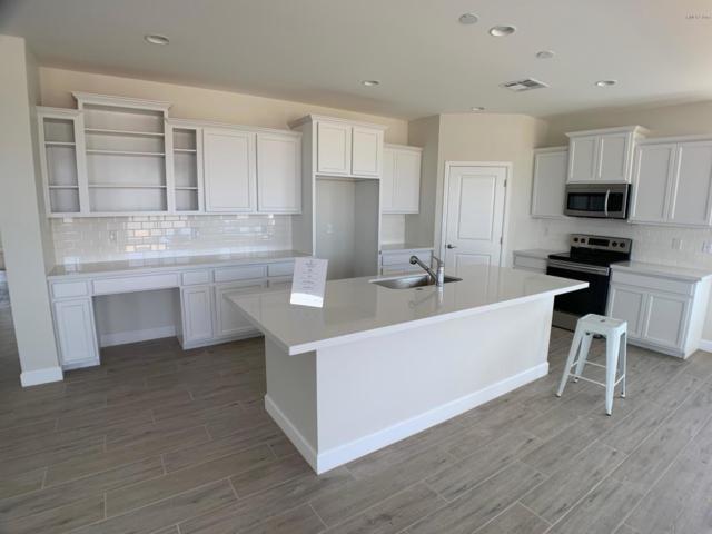 553 E Bamboo Lane, San Tan Valley, AZ 85140 (MLS #5902698) :: Yost Realty Group at RE/MAX Casa Grande