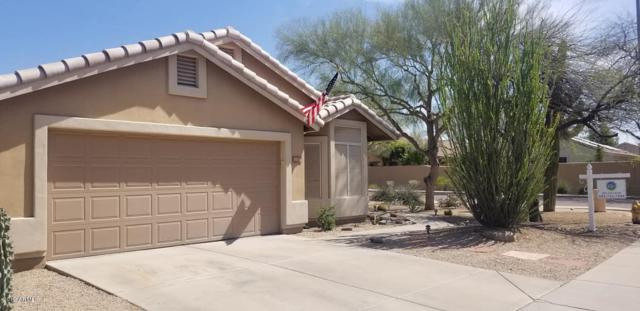 31031 N 41ST Street, Cave Creek, AZ 85331 (MLS #5902708) :: Kortright Group - West USA Realty