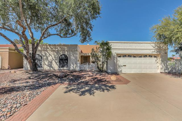 1523 Leisure World, Mesa, AZ 85206 (MLS #5902965) :: Homehelper Consultants