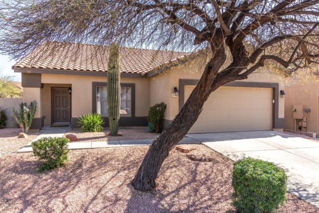 4119 E Tether Trail, Phoenix, AZ 85050 (MLS #5903063) :: Riddle Realty