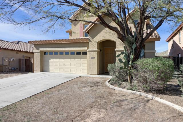 7336 W Red Hawk Drive, Peoria, AZ 85383 (MLS #5903093) :: Brett Tanner Home Selling Team