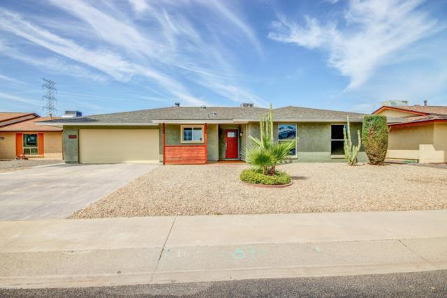 11099 W Frontier Drive, Sun City, AZ 85351 (MLS #5903623) :: Yost Realty Group at RE/MAX Casa Grande