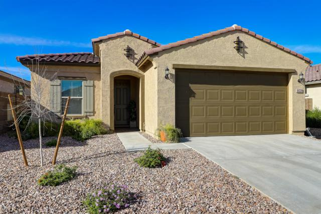 16228 W Canterbury Drive, Surprise, AZ 85379 (MLS #5903821) :: The Everest Team at My Home Group