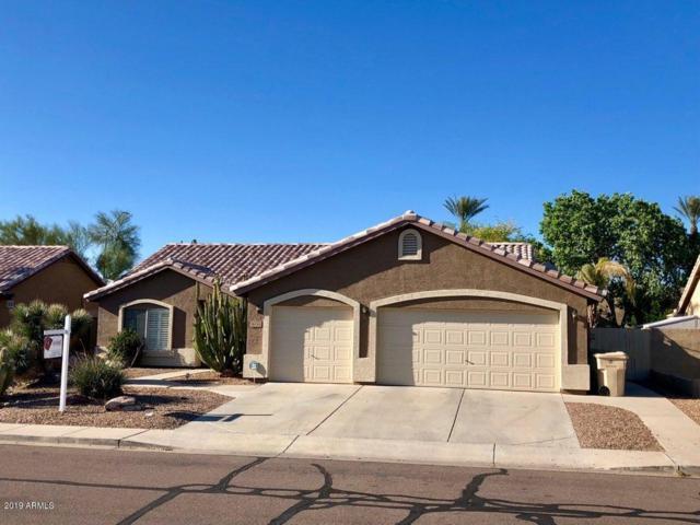 6094 W Audrey Lane, Glendale, AZ 85308 (MLS #5903970) :: CC & Co. Real Estate Team