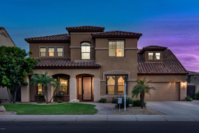 3115 E Turnberry Drive, Gilbert, AZ 85298 (MLS #5903997) :: Yost Realty Group at RE/MAX Casa Grande