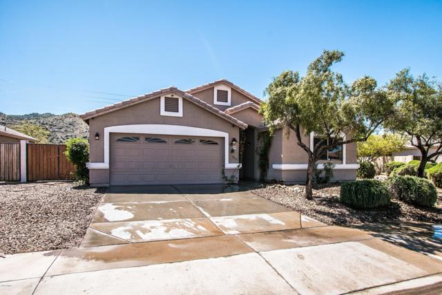 2009 E Winston Drive S, Phoenix, AZ 85042 (MLS #5904136) :: Occasio Realty