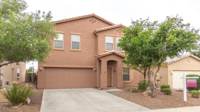 3655 W Medinah Court, Anthem, AZ 85086 (MLS #5904145) :: Revelation Real Estate