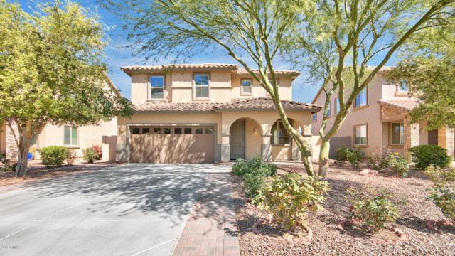 904 E Euclid Avenue, Gilbert, AZ 85297 (MLS #5904503) :: Yost Realty Group at RE/MAX Casa Grande