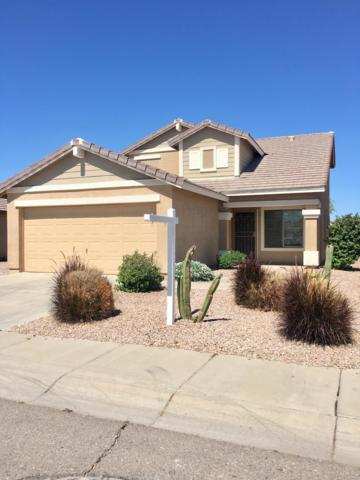 2020 W Appaloosa Way W, Queen Creek, AZ 85142 (MLS #5904507) :: RE/MAX Excalibur