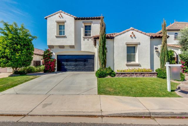 2220 E Honeysuckle Place, Chandler, AZ 85286 (MLS #5904509) :: Yost Realty Group at RE/MAX Casa Grande