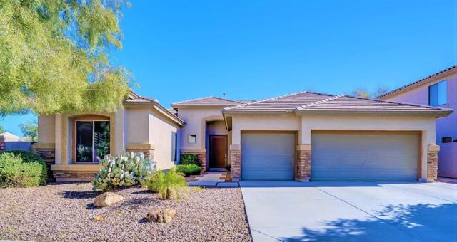 4289 E Pyrenees Court, Gilbert, AZ 85298 (MLS #5904791) :: Yost Realty Group at RE/MAX Casa Grande