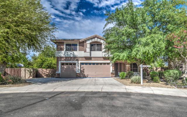 2990 E Cedar Place, Chandler, AZ 85249 (MLS #5905080) :: Devor Real Estate Associates