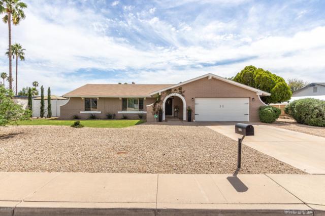 5237 E Acoma Drive, Scottsdale, AZ 85254 (MLS #5905299) :: Yost Realty Group at RE/MAX Casa Grande