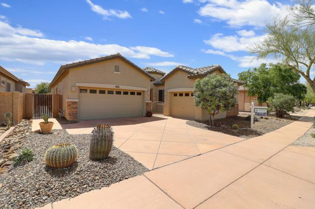 3001 W Languid Lane, Phoenix, AZ 85086 (MLS #5905390) :: Yost Realty Group at RE/MAX Casa Grande