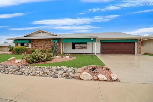 17602 N 131ST Drive, Sun City West, AZ 85375 (MLS #5905463) :: Yost Realty Group at RE/MAX Casa Grande