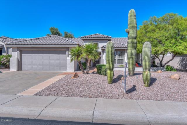 15542 W Clear Canyon Drive, Surprise, AZ 85374 (MLS #5905608) :: Riddle Realty