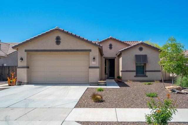 25726 N 165TH Lane, Surprise, AZ 85387 (MLS #5905736) :: Yost Realty Group at RE/MAX Casa Grande