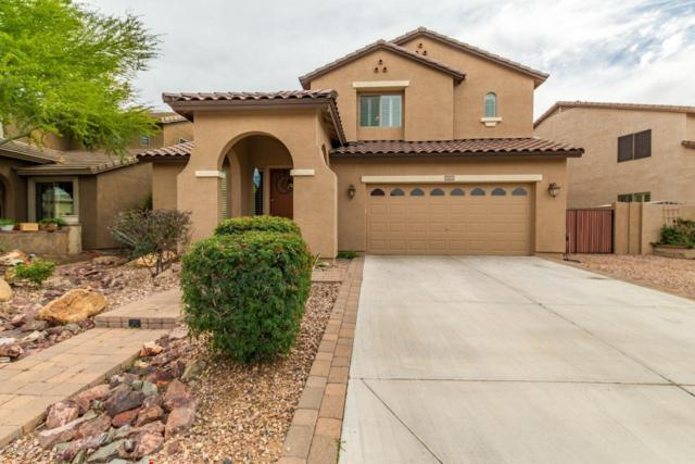 11719 W Patrick Lane, Sun City, AZ 85373 (MLS #5905747) :: Yost Realty Group at RE/MAX Casa Grande