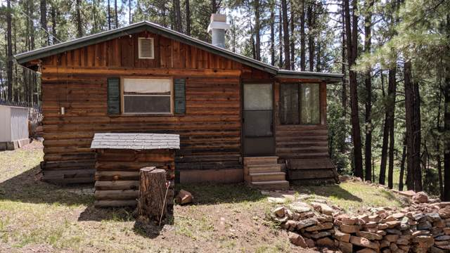 14 County Road N2057, Alpine, AZ 85920 (MLS #5905822) :: CC & Co. Real Estate Team