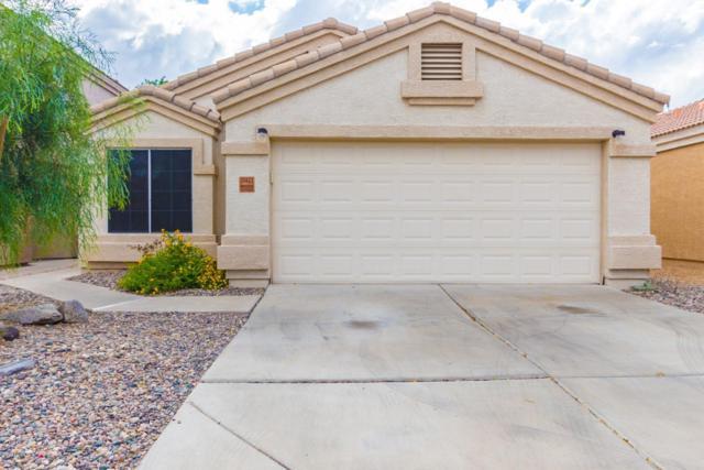 20422 N 30TH Place, Phoenix, AZ 85050 (MLS #5905962) :: Realty Executives