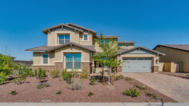 2349 N Beverly Place, Buckeye, AZ 85396 (MLS #5906179) :: Realty Executives
