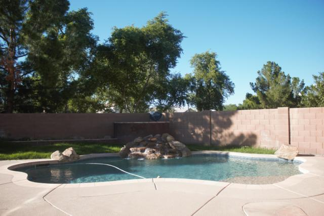 4012 E Timberline Road, Gilbert, AZ 85297 (MLS #5906451) :: Yost Realty Group at RE/MAX Casa Grande