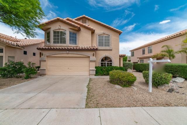20427 N 17TH Place, Phoenix, AZ 85024 (MLS #5906508) :: Yost Realty Group at RE/MAX Casa Grande