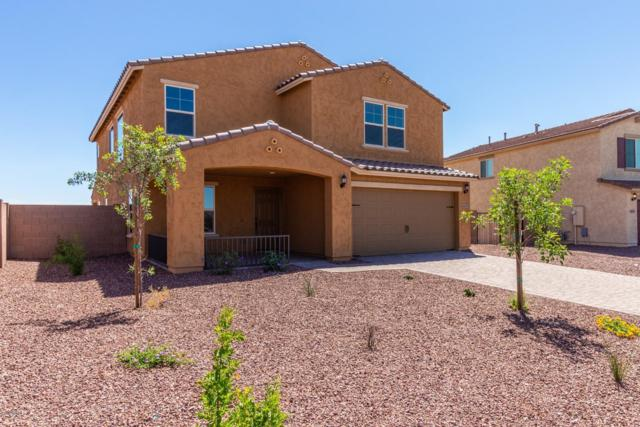 4117 S 180th Lane, Goodyear, AZ 85338 (MLS #5907013) :: Kortright Group - West USA Realty