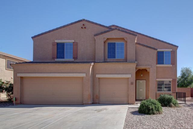 23345 W Hopi Street, Buckeye, AZ 85326 (MLS #5907091) :: The Kenny Klaus Team