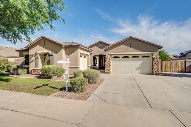 18466 E Cattle Drive, Queen Creek, AZ 85142 (MLS #5907147) :: Yost Realty Group at RE/MAX Casa Grande