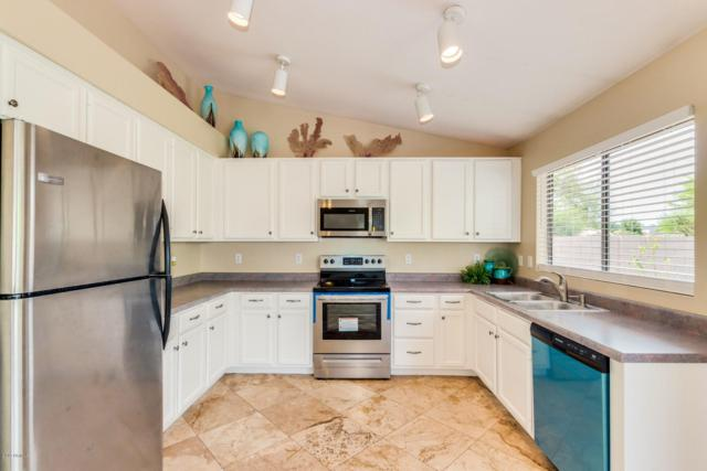 1432 W Goldfinch Way, Chandler, AZ 85286 (MLS #5907311) :: Yost Realty Group at RE/MAX Casa Grande