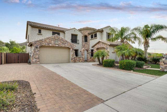 5717 W Bonanza Lane, Phoenix, AZ 85083 (MLS #5907383) :: Yost Realty Group at RE/MAX Casa Grande