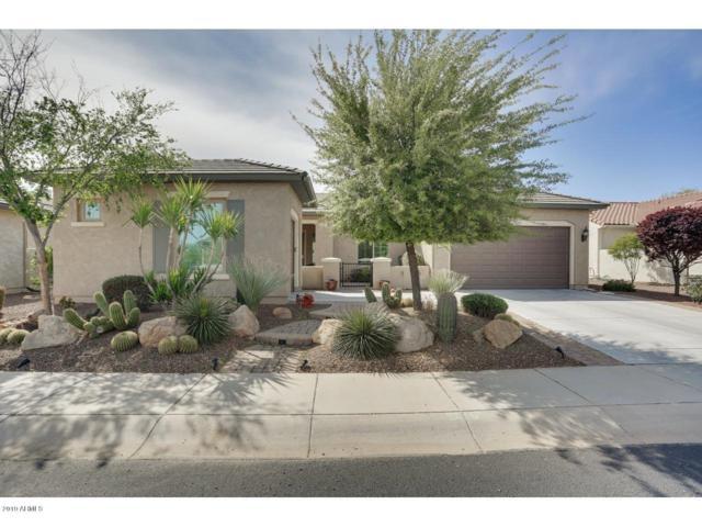 26169 W Tina Lane, Buckeye, AZ 85396 (MLS #5907691) :: Yost Realty Group at RE/MAX Casa Grande