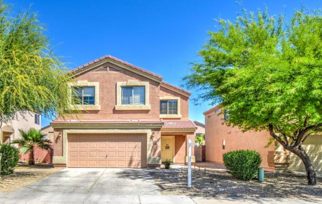 3824 W Belle Avenue, Queen Creek, AZ 85142 (MLS #5908057) :: Power Realty Group Model Home Center