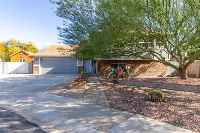 217 E Juanita Avenue, Gilbert, AZ 85234 (MLS #5908095) :: Yost Realty Group at RE/MAX Casa Grande