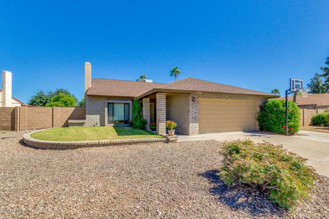 4788 W Mcrae Way, Glendale, AZ 85308 (MLS #5908479) :: Yost Realty Group at RE/MAX Casa Grande