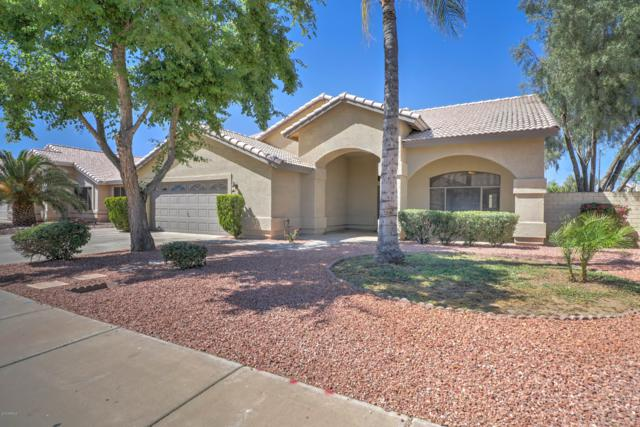 7904 W Rose Lane, Glendale, AZ 85303 (MLS #5908661) :: CC & Co. Real Estate Team