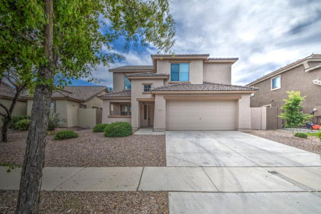 3985 E Blue Sage Court, Gilbert, AZ 85297 (MLS #5908687) :: Yost Realty Group at RE/MAX Casa Grande