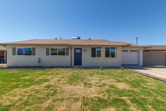 8429 E Vernon Avenue, Scottsdale, AZ 85257 (MLS #5908863) :: Conway Real Estate