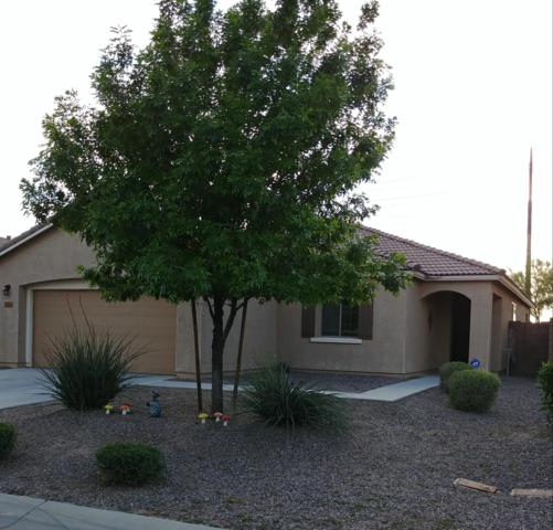 35322 N Murray Grey Drive, San Tan Valley, AZ 85143 (MLS #5908995) :: Yost Realty Group at RE/MAX Casa Grande